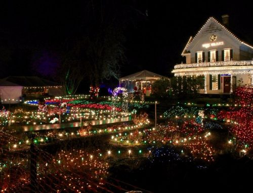 WinterVille Festival this Holiday Season!