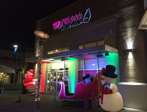 YoCream Frozen Yogurt in Cascade Station
